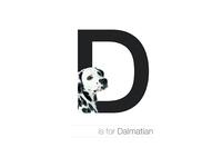 D - Dalmatian