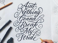Ain't Nothing Gonna Break My Stride