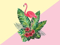 Flamingo with Botany tropic