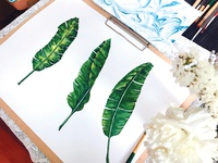 Banana Leaves watercolour Illustration