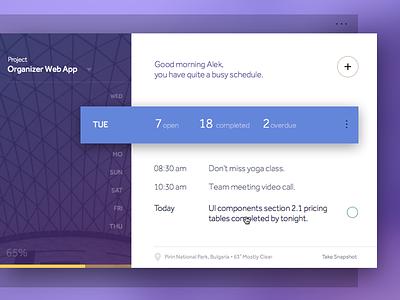 Day 010 - Task Manager App concept desktop app organizer magneticlab clean tool management app widget ui