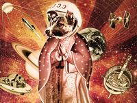 Sputnik Laika Virgin Party (2014)