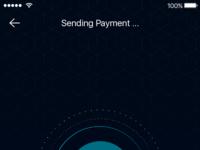 Sending payment ui