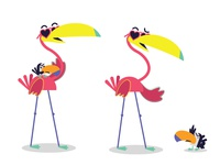 Flamingo & tucan