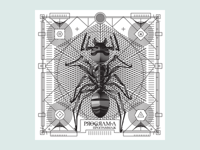 Space Ant postcard insect noblanco lines black illustration