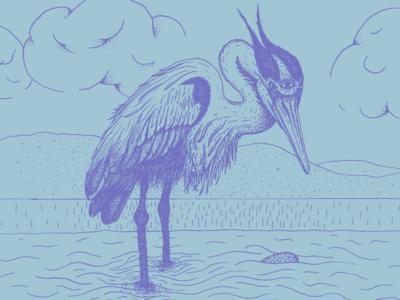 Blue Heron Illustration