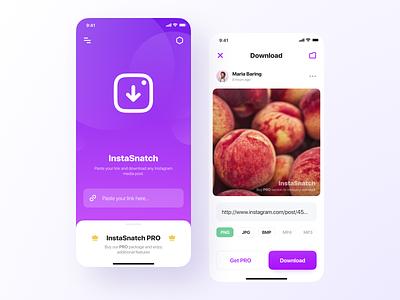 InstaSnatch ios simple uiux pictures link media download instagram design application app mobile