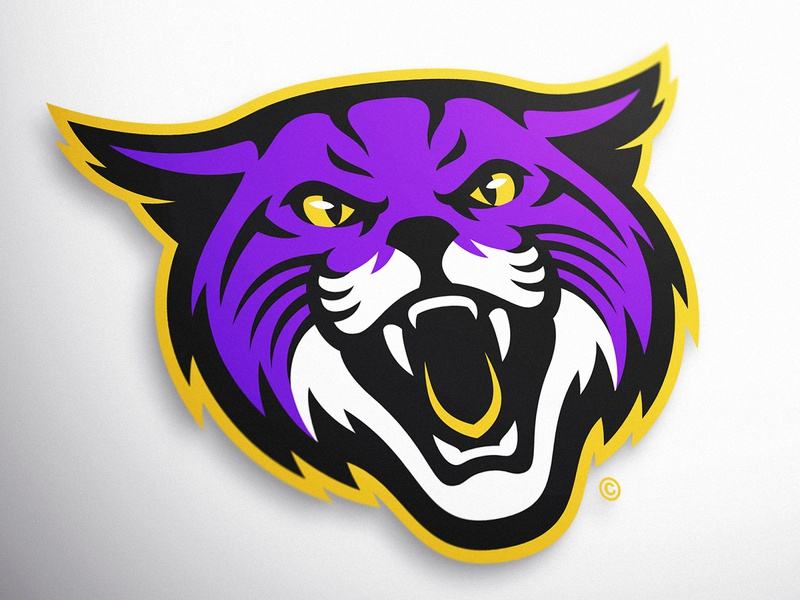 Wildcats Sports Logo *For Sale* dasedesigns illustration wildcats mascot mascot design mascot logos esports gaming sports logos identity design sports identity sports branding sports logo wildcat