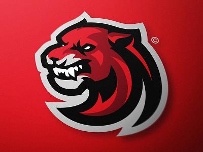 Cougar Sports Logo Design (FOR SALE) sports high school team logo dasedesigns gaming esports illustration branding sports logo mascot logo panther logo big cat cougs cougar cougars