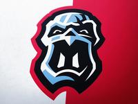 Tin Man eSports Logo (for sale)