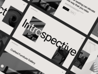 Introspect 2