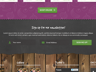 Newsletter sign up grunge texture sign up form input green purple pattern wood chalkboard