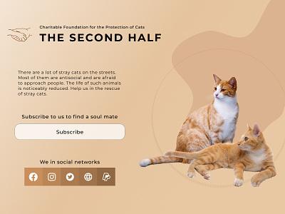 Charitable foundation dailyui благотворительность ux ui illustration design cats