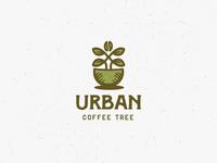 Urban Coffee Tree