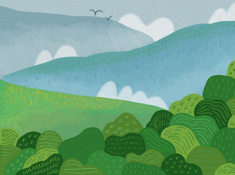 Forest plains trees forest illustration
