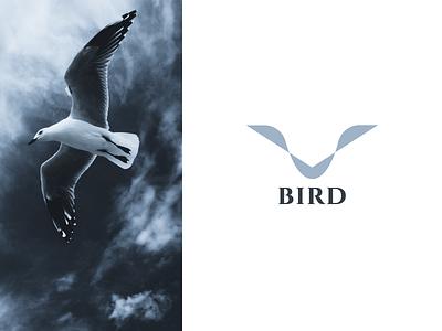 Bird bird logo bird logo