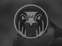 Arabic Falcon - Logo