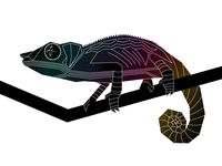 A subtle CMYK chameleon