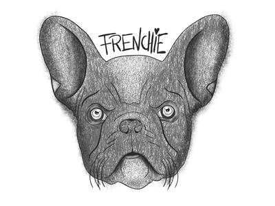 Frenchie Illustration illustration procreate ipadpro drawn hand design graphic