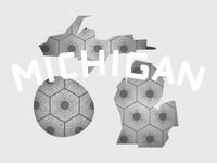Michigan Petoskey