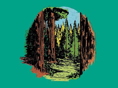 Redwood california backpacking camping vintage retro halftone sequoya trees redwoods redwood