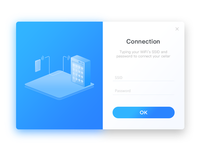 Connection Page