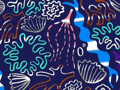 Rock pool seaside seashore rockpool illustrator illustration