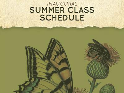 ASDM Art Institute Summer Classes Schedule