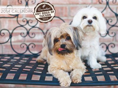 Humane Society of Souther Arizona 2014 Calendar Cover dogs calendar