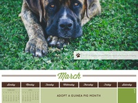 Humane Society of Souther Arizona 2014 Calendar - March Detail