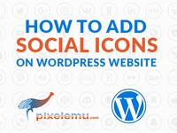 Unlimited Social Icons in WordPress Theme
