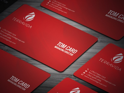 Terravida Business Cards creative logo card business cards business card branding bizness