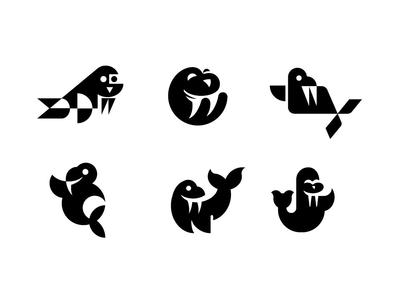 Walrus Concepts