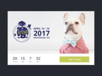 DailyUI Challenge #014: Countdown Timer
