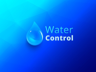 Water Control | Logo Concept identity icon web ios lettering website flat typography ux ui branding vector design site concept water control illustration character design calendar logo