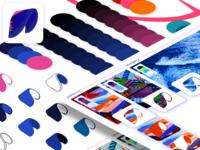 Kite | Illustration + colors