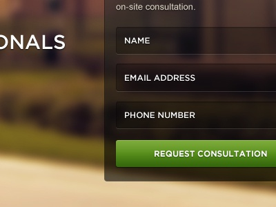 Consultation Form consult form leads fields inputs ui design homepage landing page