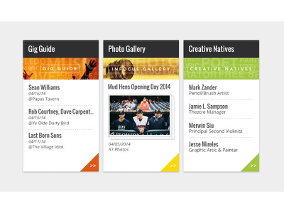 Feature Boxes ui panels section website feature boxes callout categories