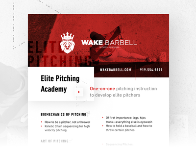Wake Barbell Pitching Academy Flyer layout fitness sport print