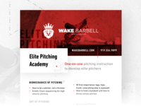 Wake Barbell Pitching Academy Flyer