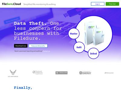 Filesure.cloud - Landing Page Design