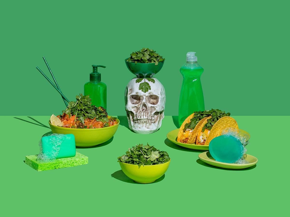 Death by Cilantro photograph artwork still life art direction herb soap green photography cilantro