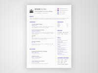 New Resume 2017