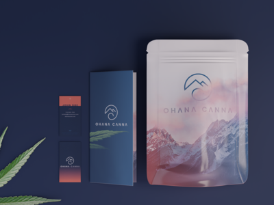 Ohana Canna Marketing Materials 3d render 3d branding mountains pacific northwest pnw promo marketing materials gradient sunset ohana bag design exit bag marijuana cannabis branding oregon business card brochure marketing cannabis