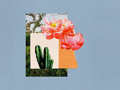 Collage layout mixed media layers flower floral cactus collage