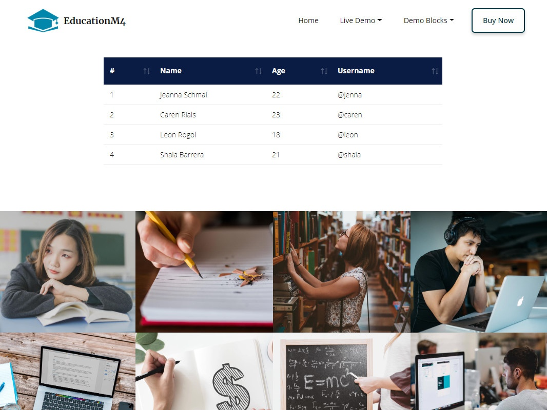 Mobirise Bootstrap Gallery Template - EducationM4! by Mobirise