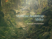 Mobirise Bootstrap Slider - An Example of PurityM Theme