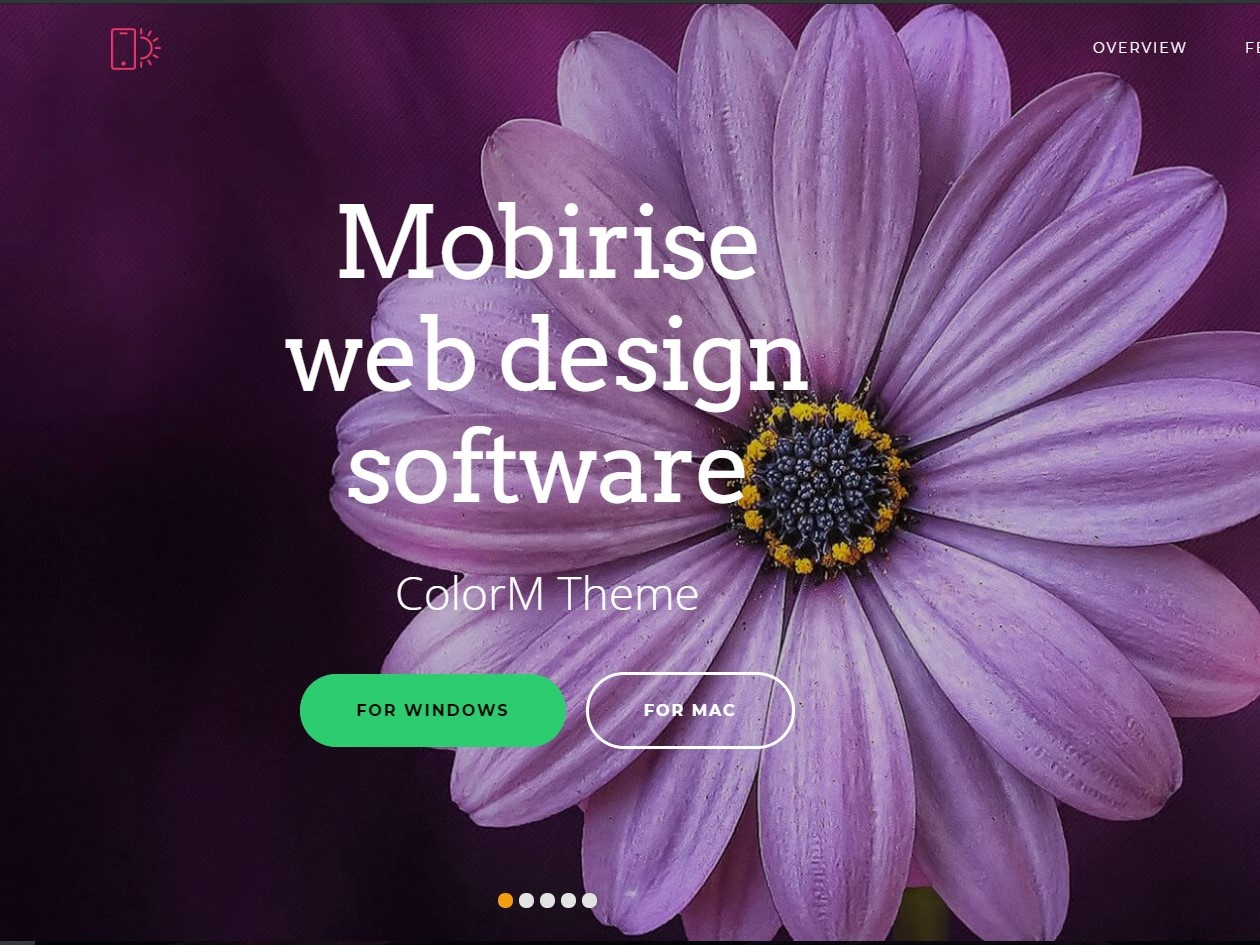 Mobirise Web Design Software Colorm Theme By Mobirise Builder On