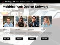 Mobirise Web Design Software -  Team Block of StrategyAMP