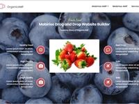 Mobirise Drag and Drop Website Builder -  Features Block